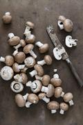 Fresh brown mushrooms with an old knife (seen from above) Stock Photos