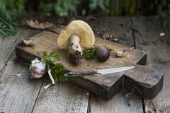 An arrangement of wild mushrooms and garlic Stock Photos