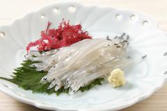 Salangidae sashimi on a shiso leaf (Japan) Stock Photos