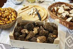 Porcini mushrooms, chanterelle mushrooms and morel mushrooms on a table with a Stock Photos