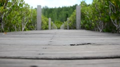 Wooden long brigde pathway at Golden Mangrove Field in Pak Nam Prasae in Rayong Stock Footage