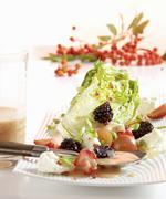 Fruity little gem lettuce with a rowan berry vinaigrette Stock Photos