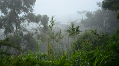 Raining in the mountain Stock Footage