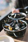 Mussels in white wine sauce in a saucepan Stock Photos