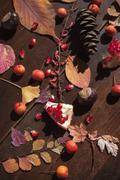 An autumnal arrangement with leaves, chestnuts and pomegranate seeds Stock Photos
