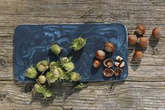 Green hazelnuts from a bush and ripe brown hazelnuts with one cracked Stock Photos