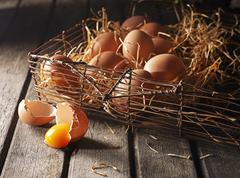 An arrangement of brown eggs in a wire basket with wooden shavings Stock Photos