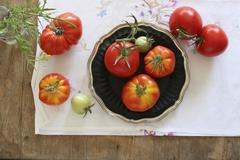 An arrangement of home-grown vine tomatoes on an embroidered tablecloth Stock Photos