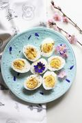 Hard-boiled eggs and spring flowers on a light blue plate Stock Photos