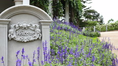 4K : Welcome sign on stone background with lavender flower, Tilt down shot Stock Footage