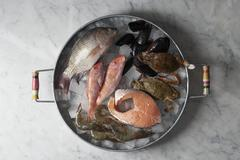 Fish and seafood on ice cubes Stock Photos