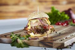 A mini hamburger with oak leaf lettuce, tomatoes, onions and cheese Stock Photos