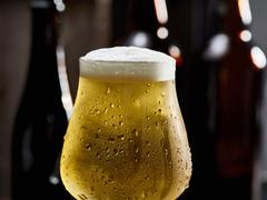 A glass of cold beer with condensation Stock Photos
