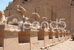 Luxor temple Stock Photos