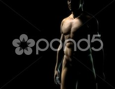 Man torso Stock Photos