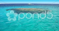 Turquoise water riff scuba diving Stock Photos
