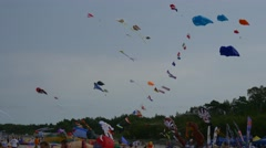 Considerable Quantity of Kites Soars in Heavens Stock Footage