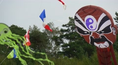 Kites Easily Soars in the Sky Stock Footage