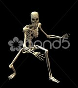 Skeleton Stock Photos