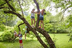 Happy kids climbing up tree in summer park Stock Photos