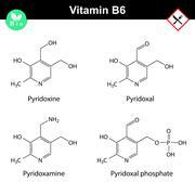 Chemical formulas of vitamin b6 forms Stock Illustration