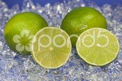 Limette-2008 Stock Photos