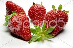 Erdbeere - 15 Stock Photos