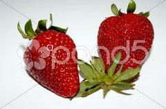 Erdbeere - 11 Stock Photos
