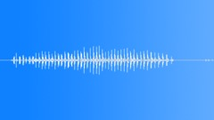 Animals Black Leopard Close-Up Deep Growl Various Modulations Sound Effect