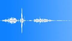 Animals Cougar Close-Up Medium Loud Growls Abrupt Snort Sound Effect