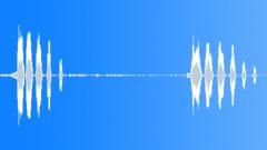 Animals Duck Quack Ext Close-Up 2 Very Loud Honking Quacks Sound Effect
