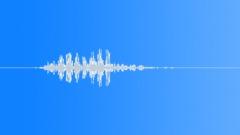 Animals Lion Close-Up Layered Growl Medium Short Reverberant Abrasive Medium Vo Sound Effect