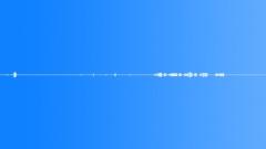 Animals Penguin Medium Close Up Gurgle Coo Sound Effect