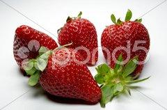 Erdbeere - 12 Stock Photos