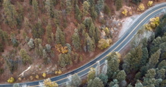 High angle view of tree-lined highway, Santa Fe, New Mexico, United States Stock Footage