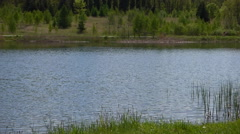 Lake with inline skaters Stock Footage