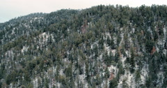 Road through snowy forest, Santa Fe, New Mexico, United States Stock Footage