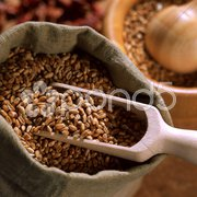 Getreide Weizen Stock Photos