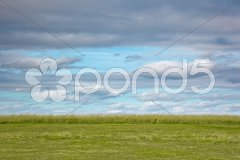 Meadow Stock Photos