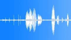 Creak Creaks Squeaks Wood Dock Ext Close Up High Pitch Creaks Sound Effect