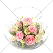 Glass bowl with pink roses Stock Photos