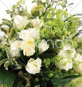 White rose bouquet Stock Photos