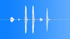 Dog Wolf Coyote Dogs Doberman Close-Up 3 Sharp Barks Soft Moans & Pants Sound Effect