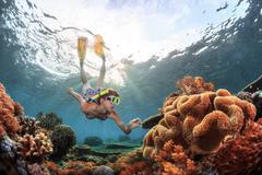 Reef Stock Photos