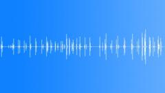 Door Doors Handle Latch Movement Int Close Up Series Of Frenetic Latch Fidgetin Sound Effect