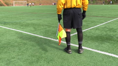 Soccer referee Stock Footage