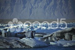 A scattering of icebergs Stock Photos