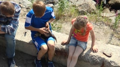 Boy and girl sit on the rocks and petting a ferret. Arkistovideo