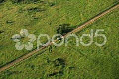Van travelling across the Masai Mara Stock Photos