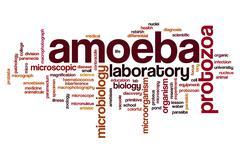 Amoeba word cloud Stock Illustration